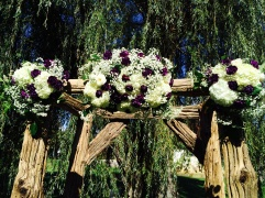 Deep Purple and Ivory Arbour